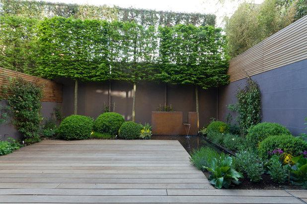 Contemporary Landscape by Landform Consultants Ltd