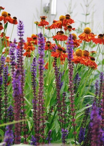 Traditional Garden by Laara Copley-Smith Garden & Landscape Design