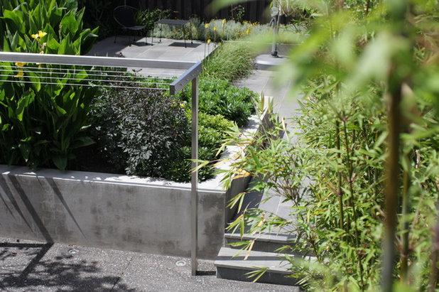 Contemporary Garden Personal space