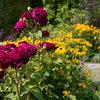 Garten-Ideen, die im Juli Freude machen