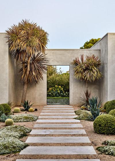コンテンポラリー 庭 by Phillip Withers