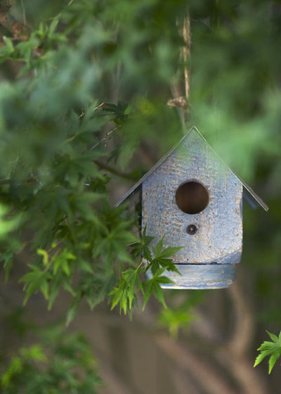 build a beautiful bird house for a garden that sings