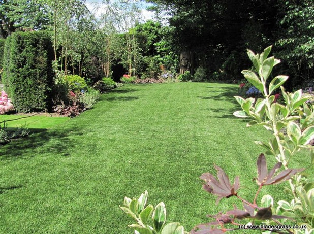 Country Garden by Blades Artificial Grass