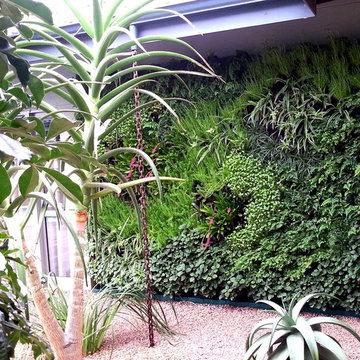 Residental Vertical gardens