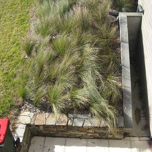 キャンベラの中サイズの、春のコンテンポラリースタイルのおしゃれな庭 (ゼリスケープ、日向、マルチング舗装) の写真