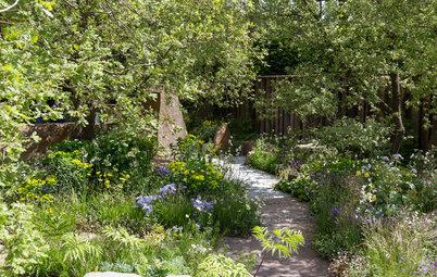 Wild Countryside Evoked in a Garden of Memories
