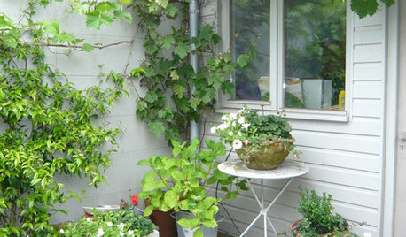 11 Easy Budget-friendly Ideas for Your Garden