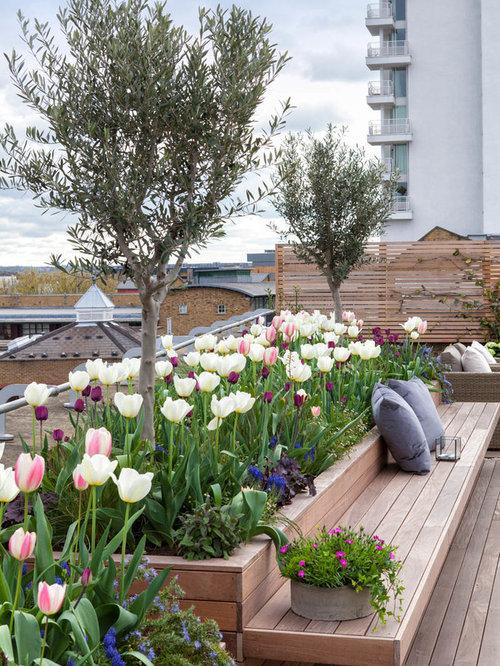 75 Roof Garden Design Ideas - Stylish Roof Garden Remodeling ...