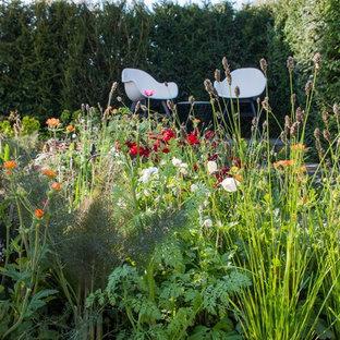 Geometrischer, Kleiner, Halbschattiger Moderner Garten im Frühling, hinter dem Haus mit Kamin und Natursteinplatten in Cardiff