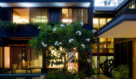 On the Night Shift: Gardens That Dazzle After Dark