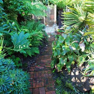 Réalisation d'un petit jardin avec une exposition partiellement ombragée.