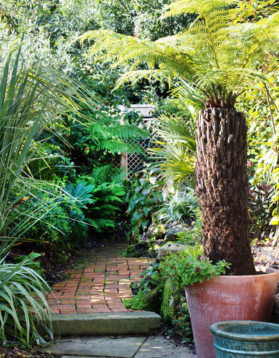 Garden Tour A Stunning Tropical Garden Before and After
