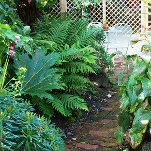 Inspiration for a small partial sun garden in Hertfordshire.