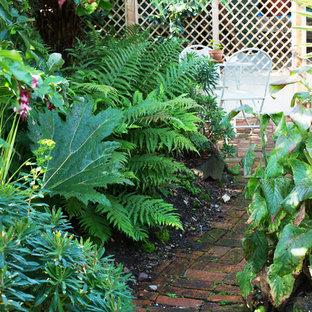 Cette photo montre un petit jardin avec une exposition partiellement ombragée.