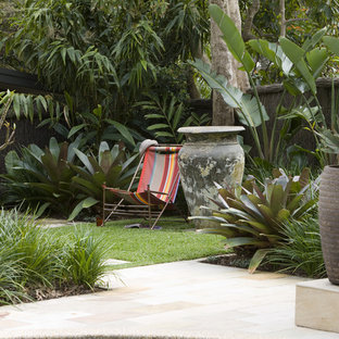 Design ideas for a tropical backyard landscaping in Sydney.