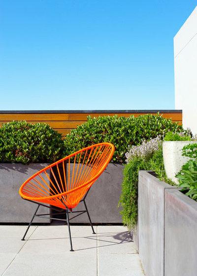 Tropical Garden by Designhunter