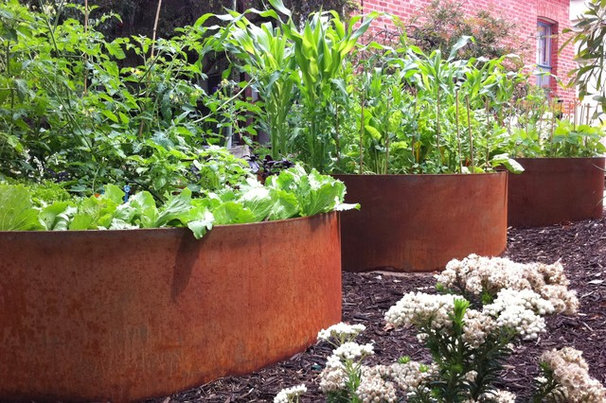 Industrial Landscape by sustainable garden design perth