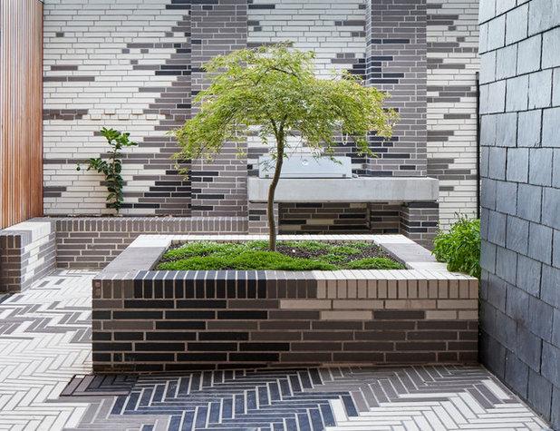 Modern Garten by Melbourne Design Studios (MDS)