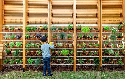 A Beginner's Guide to Urban Terrace Farming