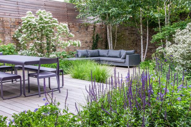 Современный Сад by Hamilton Cody Garden Design