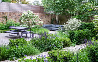 Yard of the Week: Entry Garden With Leafy Screening Solutions