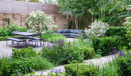 Garden Tour: A Large, Tricky Front Garden Becomes a Quiet Haven