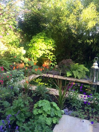 Trendy Have by jackie gough garden design Ltd