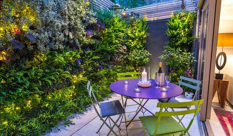 10 Reasons To Love A Tiny Garden