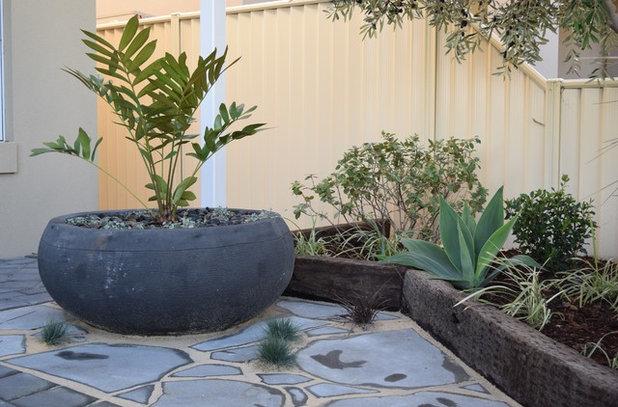 Beach Style Garden by Nouveau Garden Designs