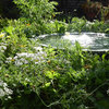 Here's Why Every Garden Has Space for a Water Feature