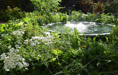 A Water Feature For Every Garden