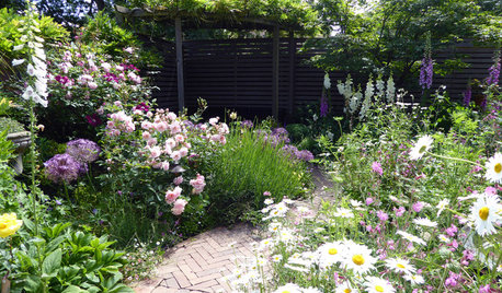 When is a Good Time to Start Planning My Garden Redesign?