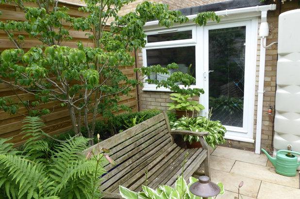 Contemporary Garden by Amanda Shipman Designs