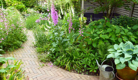 6 Ways to Elegantly Link Different Areas of Your Garden