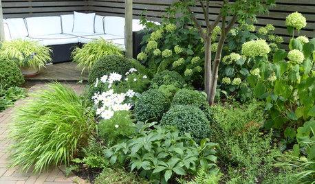 Pro Panel: 8 Easy Tips for Novice Gardeners