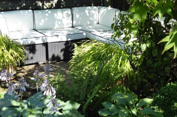 Traditional Garden by Amanda Shipman Designs