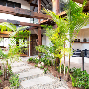 Inspiration for a tropical courtyard full sun garden for summer in Cairns with a garden path.
