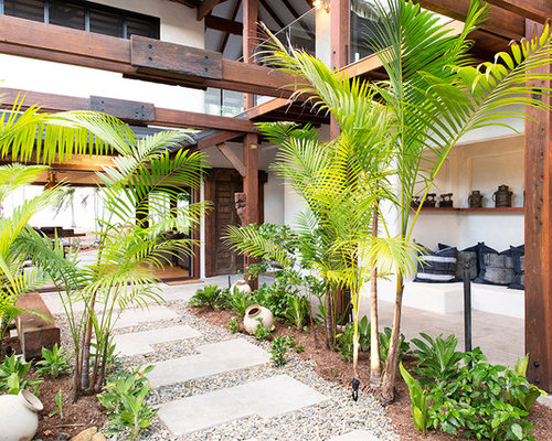 Inspiration For A Tropical Courtyard Full Sun Garden For Summer In Cairns  With A Garden Path