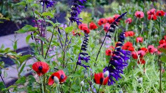 Spring colour pop
