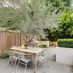 This is an example of a medium sized contemporary back garden in London with a potted garden.