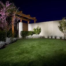 Modern Landscape Stepney Residential Display & Office