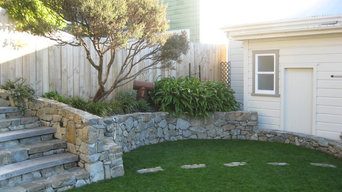 Stone and Macrocarpa steps