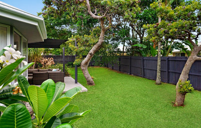 Pro Panel: What Should I Do With My Big, Boring Backyard?