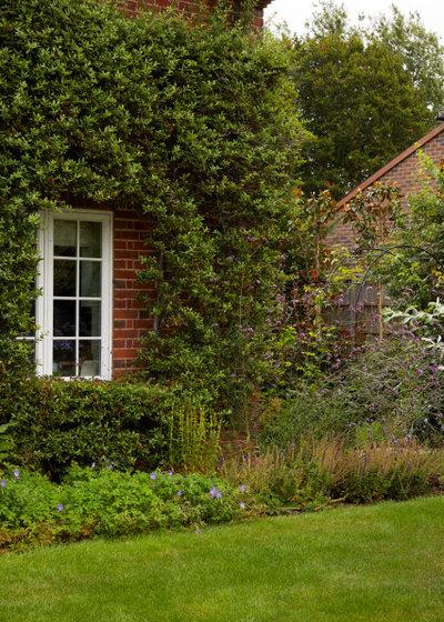Современный Сад by Ed Oddy Garden Design