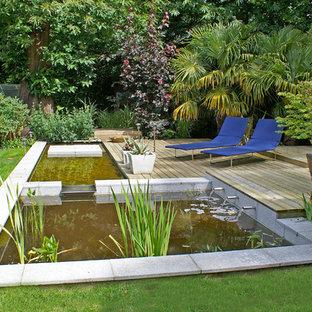 Surrey Large Garden