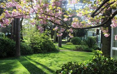 Idyllic English Gardens for the Whole Community