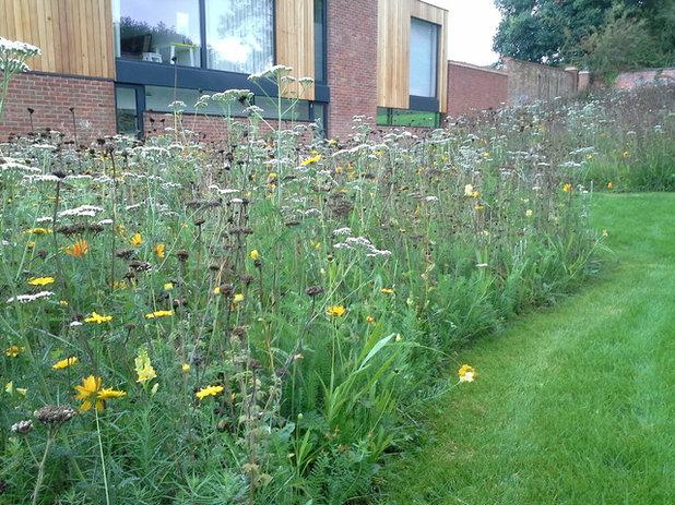 Garten by Pictorial Meadows