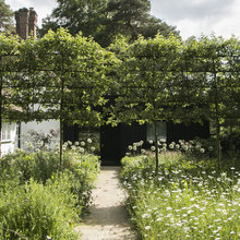 Crab Apple Trees Set Off a Stylish English Courtyard