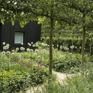 Geometrischer, Halbschattiger Landhaus Gemüsegarten hinter dem Haus mit Natursteinplatten in London