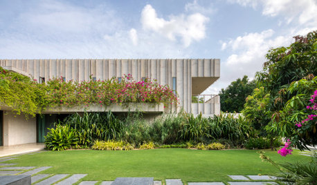 Ahmedabad Houzz: A 1400-Sq-M Bungalow Full of Secret Gardens